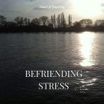 befriending-stress-1